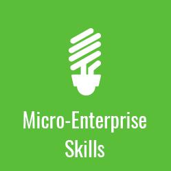 Micro-Enterprise Skills