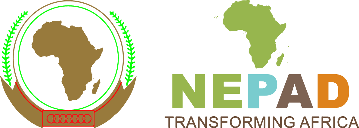NEPAD - Recognition for distinguished contribution in environmental management in Africa (In Partnership with WWF Madagascar)