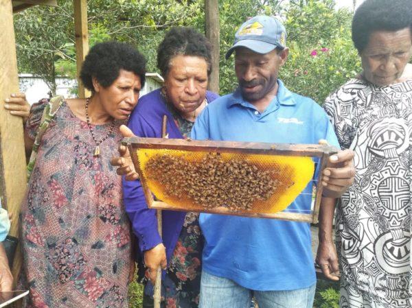Pacific Islands beekeeping barefoot college international women